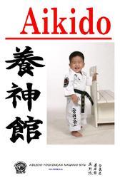 Айкидо для детей-физическое развитие