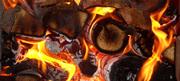 Купить дрова оптом в Запорожье.