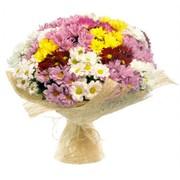 Доставка цветов и подарков в Запорожье