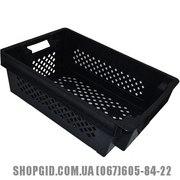 Пластиковые ящики для рыбы, овощейкупить в Бердянске shopgid com ua