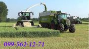 Уборка кукурузы на силос,  сенаж,  подбор валков.  Запорожье.